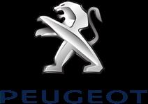 Инструмент Peugeot