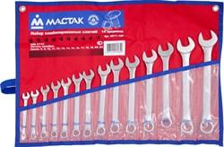 Набор комбинированных ключей, 8-24 мм, 14 предметов МАСТАК 0211-14P - фото 11336