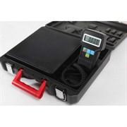 Весы электронные с диапазоном измерений 0-100 кг, 220 В, 50 Гц. Поставляются в пластиковом кейсе.